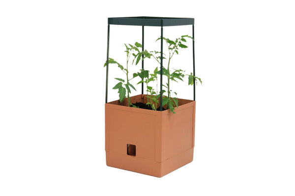 Greenlife Tomato Tower 3 Tier - 250 x 250 x 1200mm - Terracotta