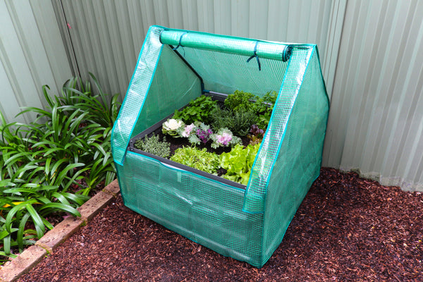 Greenlife Square Drop Over Greenhouse with PE Cover - 900 x 900 x 1020mm