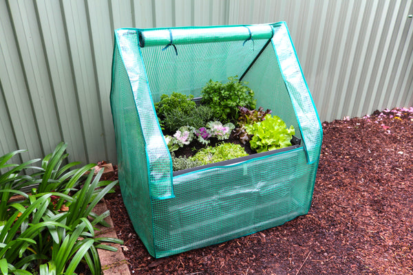 Greenlife Drop Over Greenhouse - 900 x 900 x 1020mm