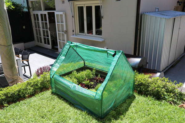 Greenlife Drop Over Greenhouse - 1250 x 950 x 920mm