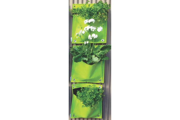 Takasho Felt Vertical Garden Wall - 3 Pocket - Fresh Lime
