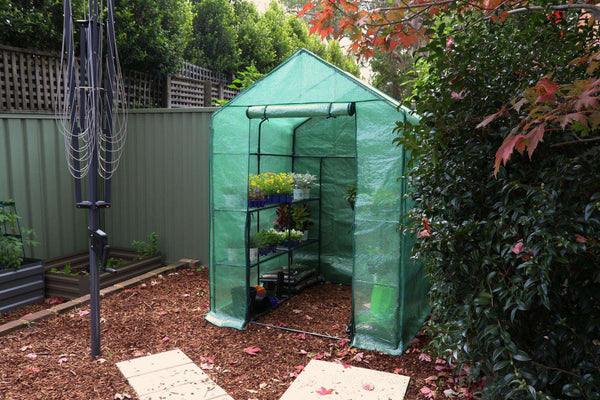 Greenlife 4 Tier Walk-in Greenhouse with PE Cover - 1950 x 1430 x 1430mm