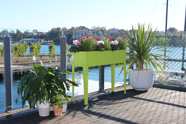 Greenlife Raised Garden Planter - 1000 x 300 x 800mm - Fresh Lime
