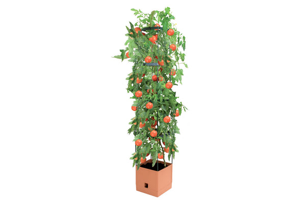 Tomato Tower - 4 Tier Square - 270 x 270 x 1500mm - Terracotta