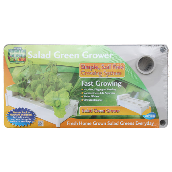Salad and Lettuce Grower - 560 x 290 x 120mm - White