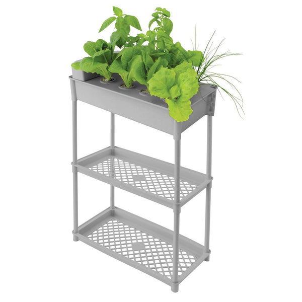 Salad Grower with Stand - 560 x 290 x 870mm