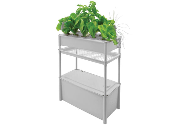 Salad Green Grower with Tank and Stand - 560 x 290 x 870mm