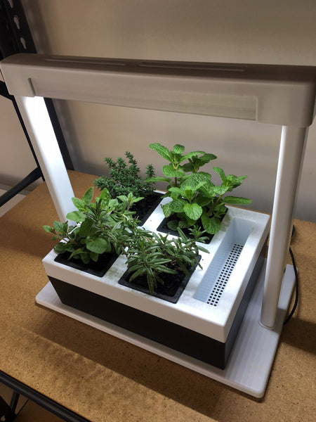 Greenlife LED Grow Light Herb Lamp Kit with 4 Pot Growing Planter - Self Watering
