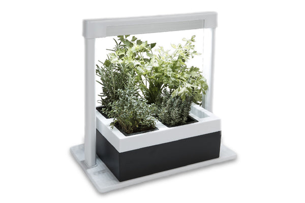 Greenlife LED Herb Lamp Kit with 4 Pot Growing Planter - Self Watering