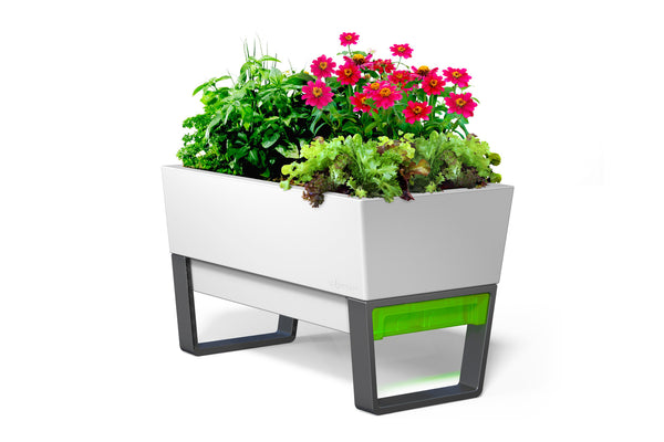Glowpear Urban Garden Planter - Self Watering Raised Garden Planter