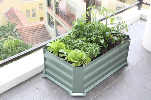 Greenlife Patio Raised Garden Bed with Base - 800 x 500 x 300mm - Eucalypt Green