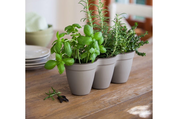 Keter Ivy Herb Planters x 2 - Grey