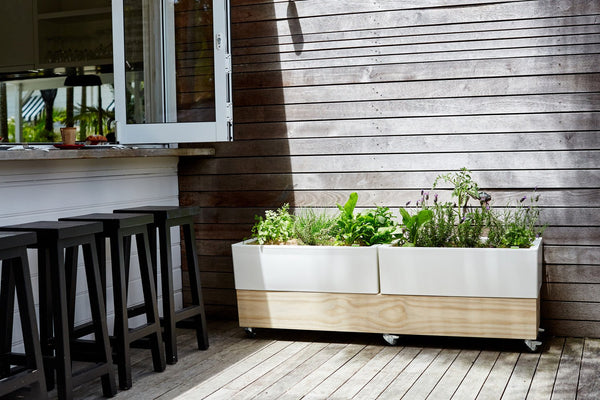 Glowpear Urban Garden Double Cafe Raised Planter - Self Watering