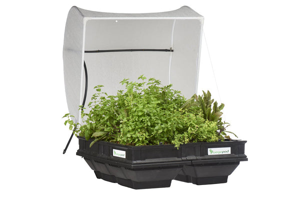 Vegepod Medium Raised Garden Bed with Cover - Self Watering Container Gardening
