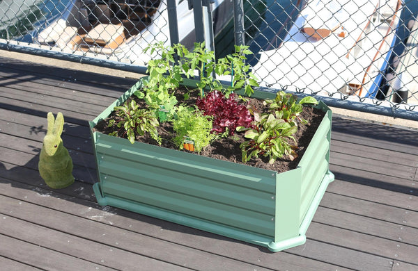 Greenlife Patio Raised Garden Bed with Plastic Base - Eucalypt Green