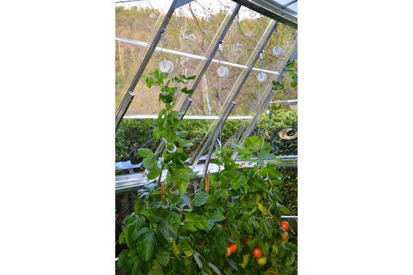 Maze Greenhouse Accessory - Trellising Kit