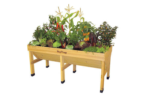 VegTrug Wooden Planter Natural - Medium