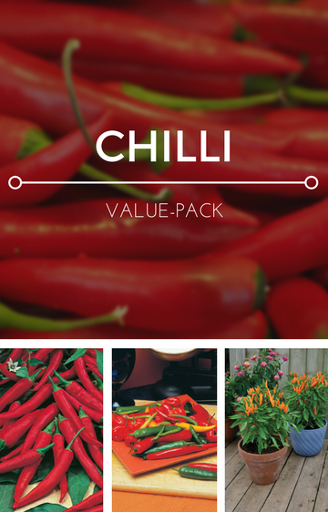 Chillies 3-in-1 Seed Pack