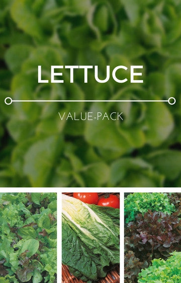 Lettuce 3-in-1 Seed Pack
