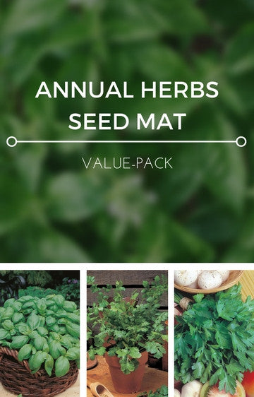 Annual Herbs 3-in-1 Seed Mat