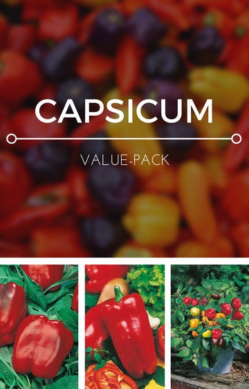 Capsicums 3-in-1 Seed Pack