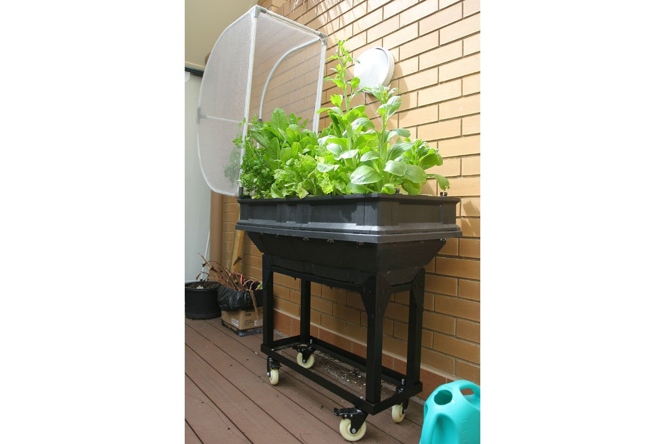 Vegepod Trolley Stand Small Greenlife
