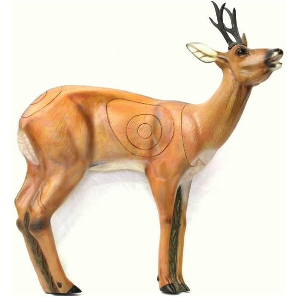 SRT Roe Buck