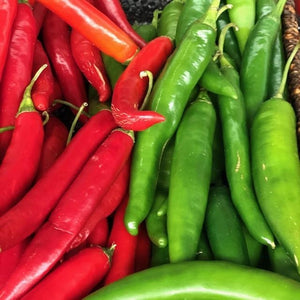 Chilli - Red (each) - Rosalie Gourmet Market