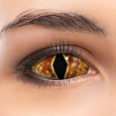 Micro® Eye Circle Lens Infected Monster 22mm Scleral Colored Contacts Lens M01124