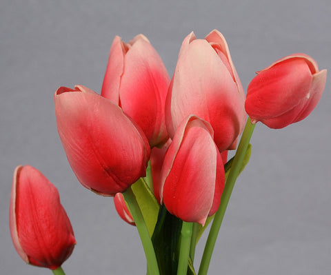 Small Tulip Buds - Pink