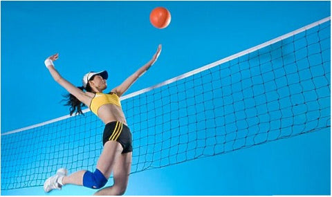 Good Deal International Match Standard Official Sized Volleyball Net