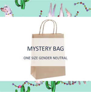 Mystery Bag - One Size Gender Neutral