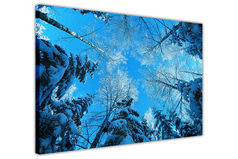 Blue Winter Tree on Framed Canvas Wall Art Prints Room Deco Poster Photo Landscape Pictures Home Decoration Artwork-3D
