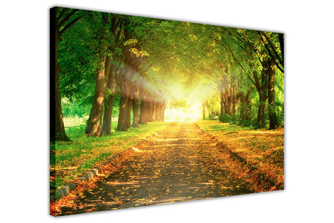 Magestic Road on Framed Canvas Wall Art Prints Floral Pictures Home Decoration Room Deco Poster Photo Artwork-3D