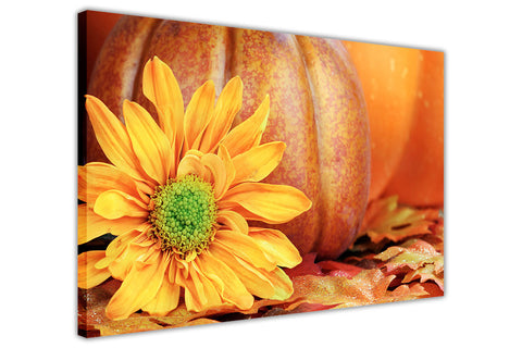 Sunflower and Pumpkin on Framed Canvas Wall Art Prints Floral Pictures Home Decoration Room Deco Poster Photo Artwork-3D