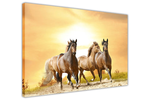 Wild Running Horses Sunset Framed Canvas Wall Art Pictures Prints Pine Wood Posters Images Sale Canvas It Up