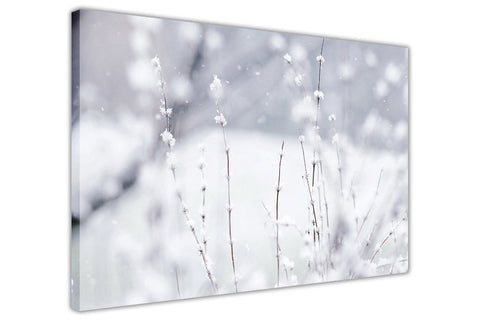 Winter Flowers on Framed Canvas Wall Art Prints Floral Pictures Home Decoration Room Deco Poster Photo Artwork-3D
