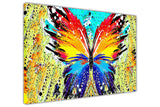 Colourful Abstract Butterfly on Framed Canvas Wall Art Prints Room Deco Poster Photo Landscape Pictures Home Decoration Artwork-3D