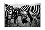 Affectionate Wild Zebras on Framed Canvas Wall Art Prints Room Deco Poster Photo Landscape Pictures Home Decoration Artwork-Front