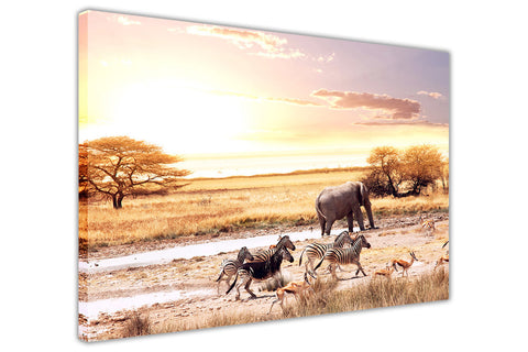 African Wild Animals Stampede Canvas Wall Art Pictures Prints Canvas It Up 3D