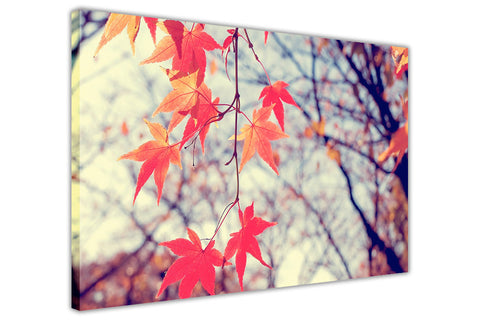 Autumn Red Leaves on Framed Canvas Wall Art Prints Floral Pictures Home Decoration Room Deco Poster Photo Artwork-3D