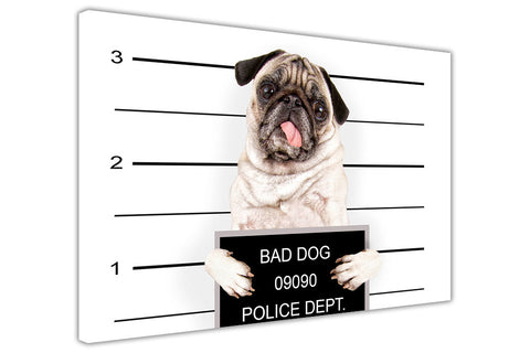 Criminal Dog Police Linup Canvas Wall Art Pictures Prints Canvas It Up 3D