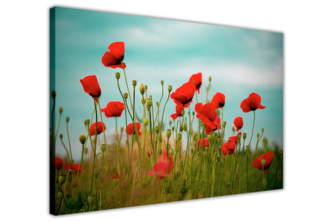 Blooming Red Poppy Field on Framed Canvas Wall Art Prints Floral Pictures Home Decoration Room Deco Poster Photo Artwork-3D