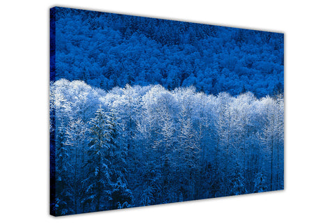 Blue Winter Forest on Framed Canvas Wall Art Prints Landscape Pictures Home Decoration Room Deco Poster Photo Artwork-3D