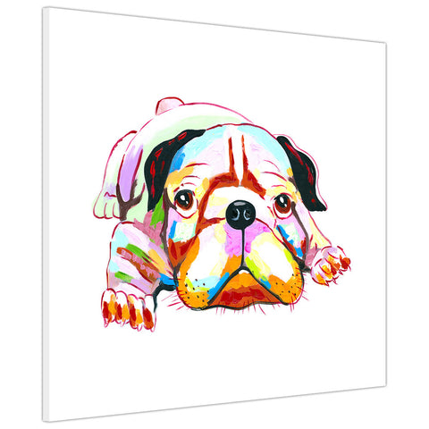 Colourful British bulldog puppy on Framed Canvas Wall Pitures Art For The Bedroom Livingroom home Office Animal Prints Kids Children-3D