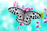 Butterfly on Pink Flower Canvas Wall Art Pictures Home Decoration Framed Prints Canvas It Up Front