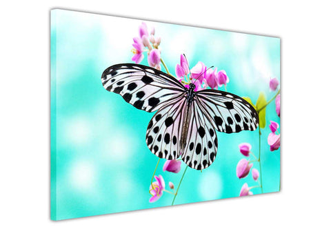 Butterfly on Pink Flower Canvas Wall Art Pictures Home Decoration Framed Prints Canvas It Up 3D