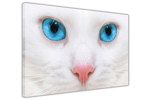 Cat With Blue Eyes on Framed Canvas Wall Art Prints Room Deco Poster Photo Landscape Pictures Home Decoration Artwork-3D