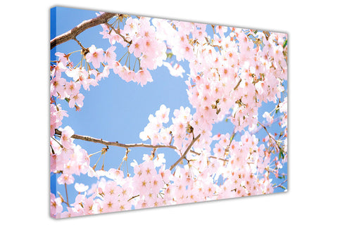 Cherry Blossom Tree on Framed Canvas Wall Art Prints Floral Pictures Home Decoration Room Deco Poster Photo Artwork-3D