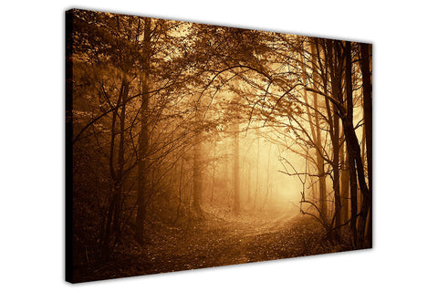 Dark misty Forest on Framed Canvas Wall Art Prints Landscape Pictures Home Decoration Room Deco Poster Photo Artwork-3D